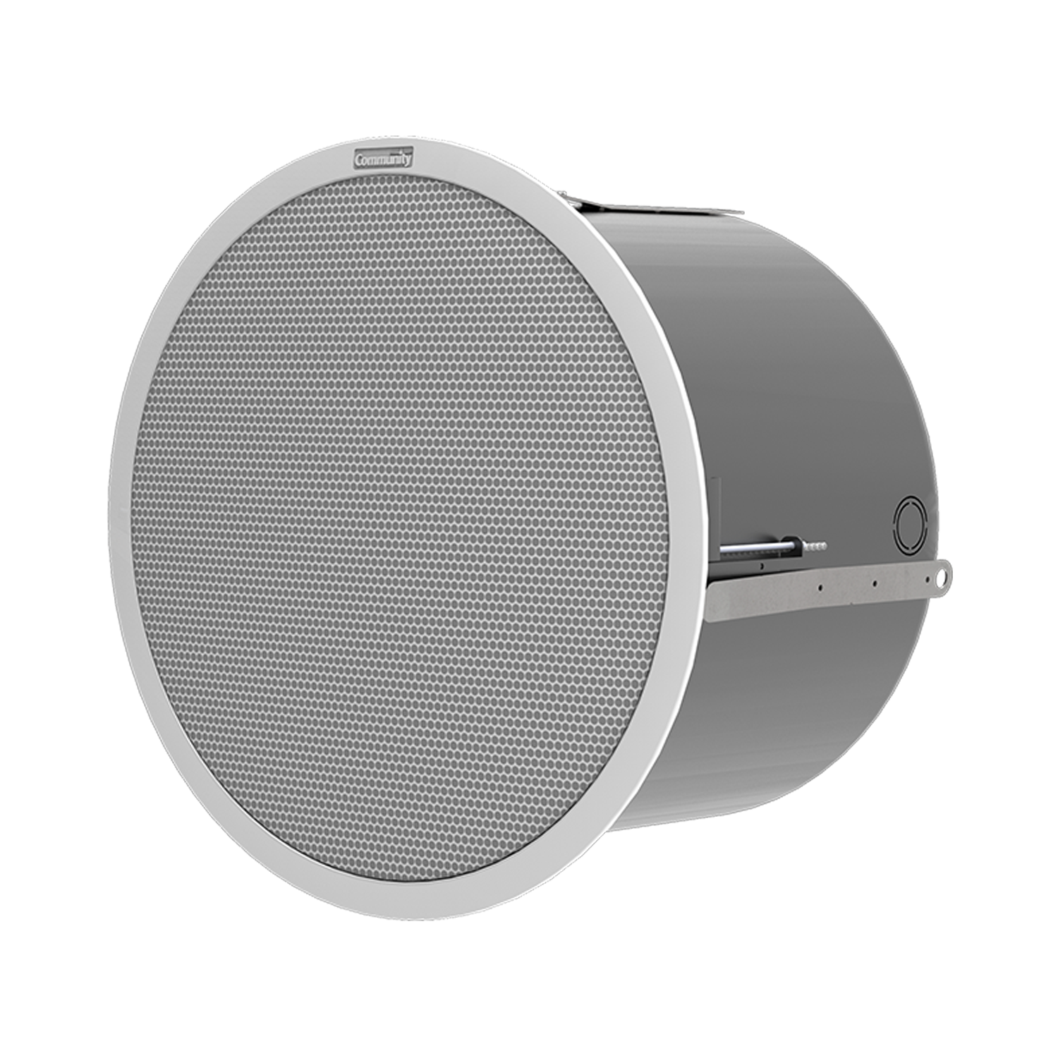 D10SUB Ceiling Loudspeaker 10-inch High Output High Quality Subwoofer